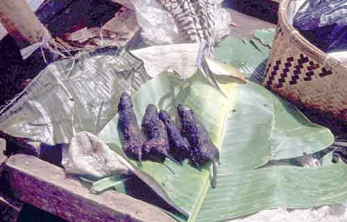 Deep fried rat-AsiaPhotoStock