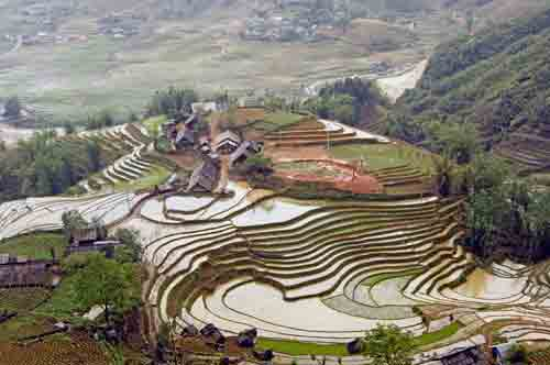 wet rice terraces-AsiaPhotoStock