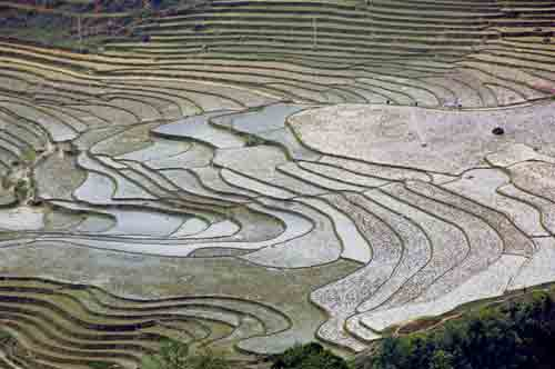 rice terraces patterns-AsiaPhotoStock