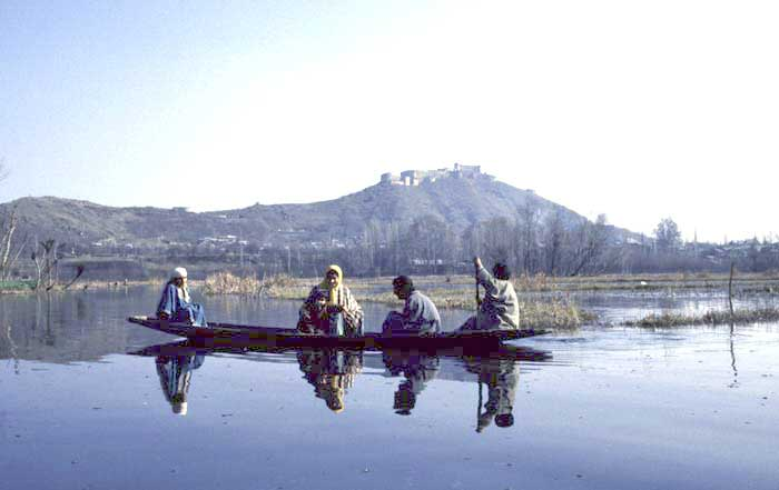 small boat on dal lake-AsiaPhotoStock