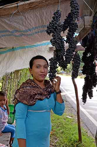 aceh grapes-AsiaPhotoStock