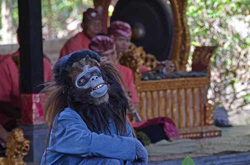 barong monkeys-AsiaPhotoStock