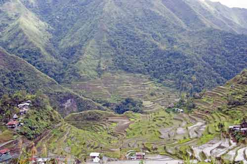 batad rice view-AsiaPhotoStock