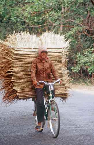 cyclist with load-AsiaPhotoStock