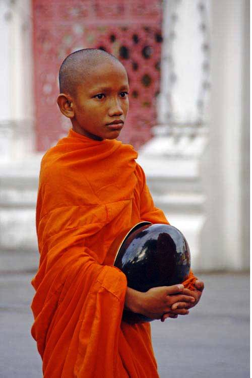 boy monk with bowl-AsiaPhotoStock
