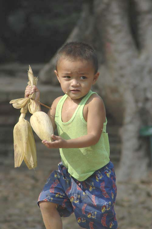 boy with corn-AsiaPhotoStock