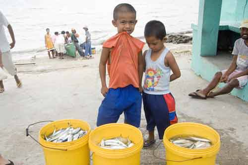 boys and buckets of fish-AsiaPhotoStock