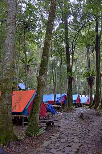 camp simalem-AsiaPhotoStock