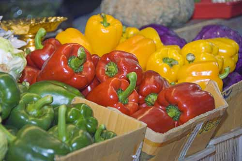 colourful peppers-AsiaPhotoStock