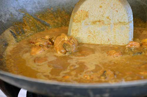 chicken curry-AsiaPhotoStock