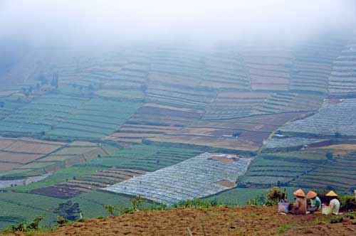 dieng clouds-AsiaPhotoStock