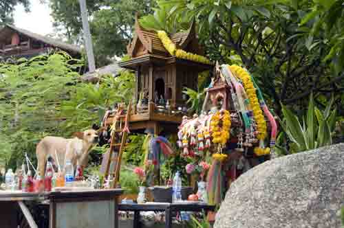 dog on shrine-AsiaPhotoStock