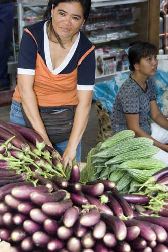 egg plant seller-AsiaPhotoStock