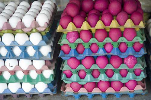 colored eggs-AsiaPhotoStock