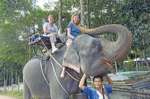 elephant ride-AsiaPhotoStock