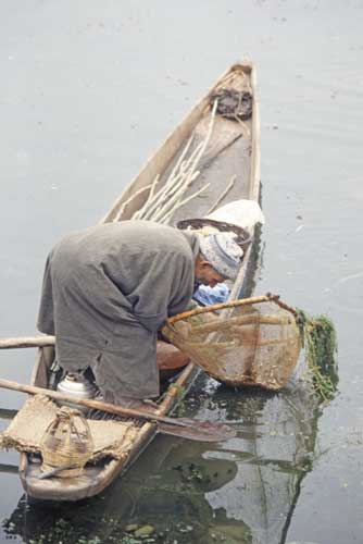 dal lake fisherman-AsiaPhotoStock