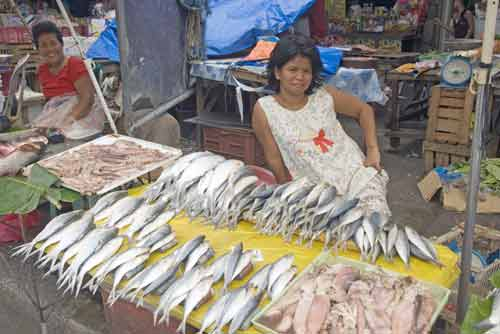 fish lady at market-AsiaPhotoStock