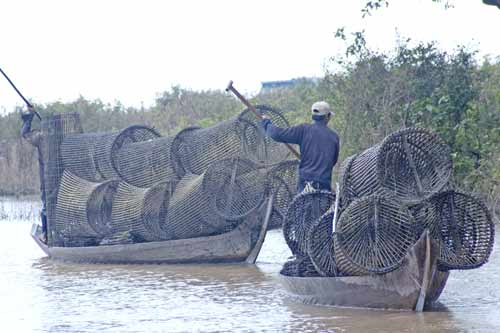 fish traps-AsiaPhotoStock