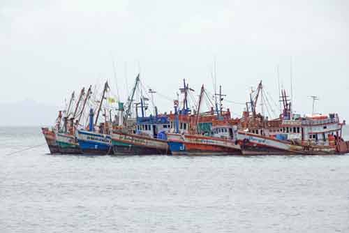 fleet of fishing boats-AsiaPhotoStock