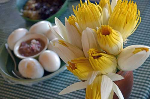 flowers and eggs-AsiaPhotoStock