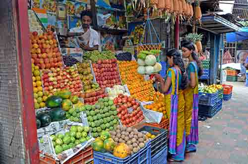 fruit trivandrum-AsiaPhotoStock