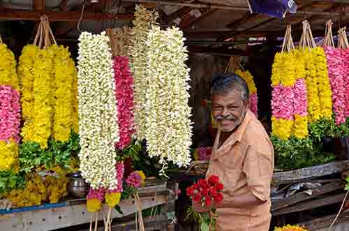 garlands trivandrum-AsiaPhotoStock