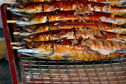 grilled fish-AsiaPhotoStock