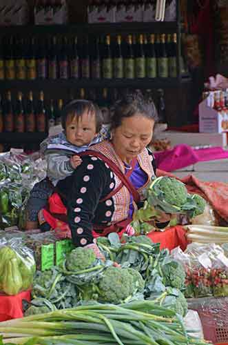 hmong and baby-AsiaPhotoStock