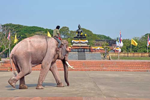 king statue and elephant-AsiaPhotoStock