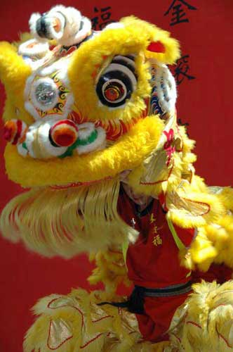 lion dance-AsiaPhotoStock