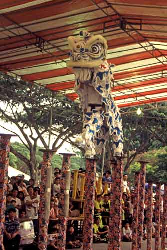 competitive lion dance-AsiaPhotoStock