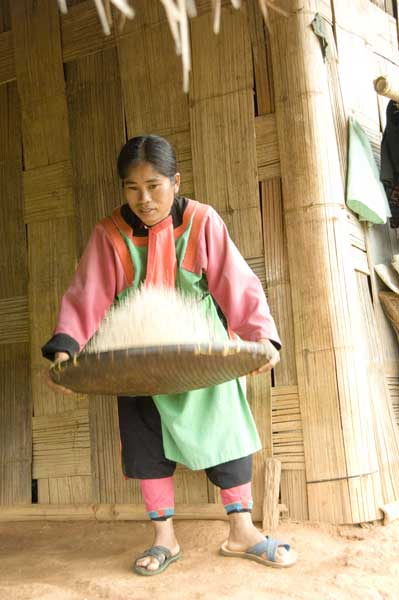 lisu sieving rice-AsiaPhotoStock