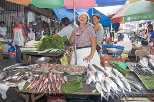 fish stall wet market-AsiaPhotoStock