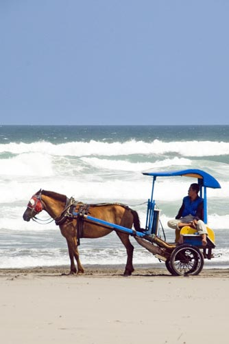 parangtritis carriage-AsiaPhotoStock