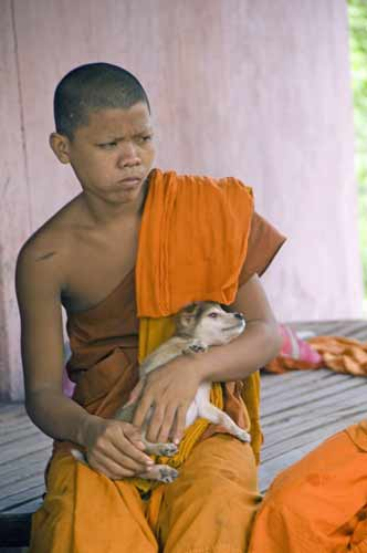monk with pet-AsiaPhotoStock