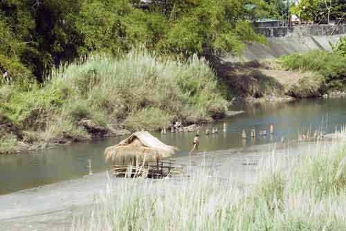 shade at the river-AsiaPhotoStock