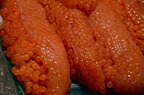 roe of salmon-AsiaPhotoStock