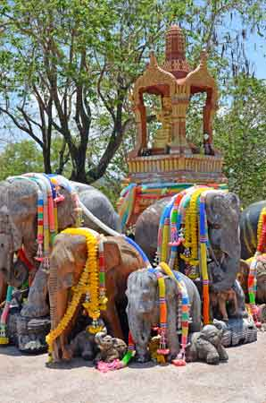 shrine of elephants-AsiaPhotoStock