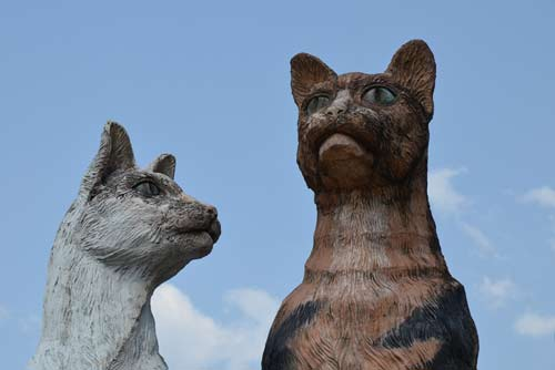 statue of cats kuching-AsiaPhotoStock