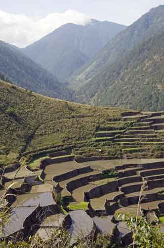 bay yo rice terraces-AsiaPhotoStock
