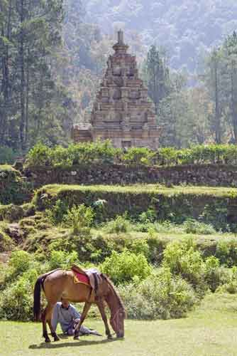horse rider and temple-AsiaPhotoStock