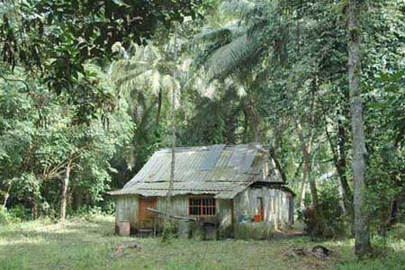 ubin house-AsiaPhotoStock
