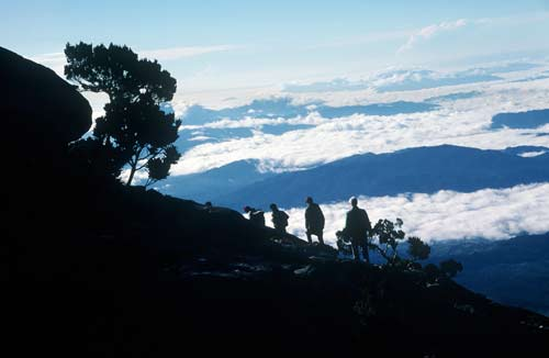 walking up kinabalu-AsiaPhotoStock