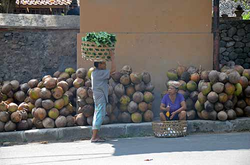 wall with coconuts-AsiaPhotoStock
