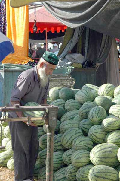 selecting melons-AsiaPhotoStock